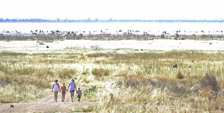 Family bushwalking at Winton Wetlands