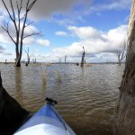 Canoing at Winton Wetlands