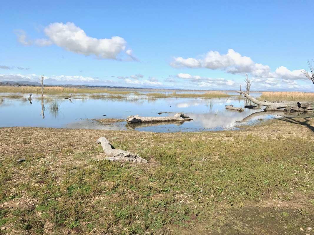 Winton Wetlands - photo by Hamish Sinclair