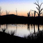 Suzey Barker sunset on the pond