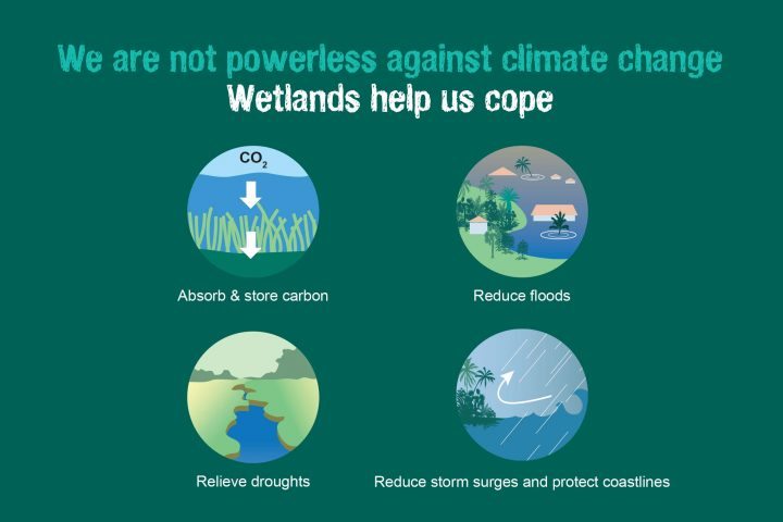 World Wetlands Day 2019 – 2 February