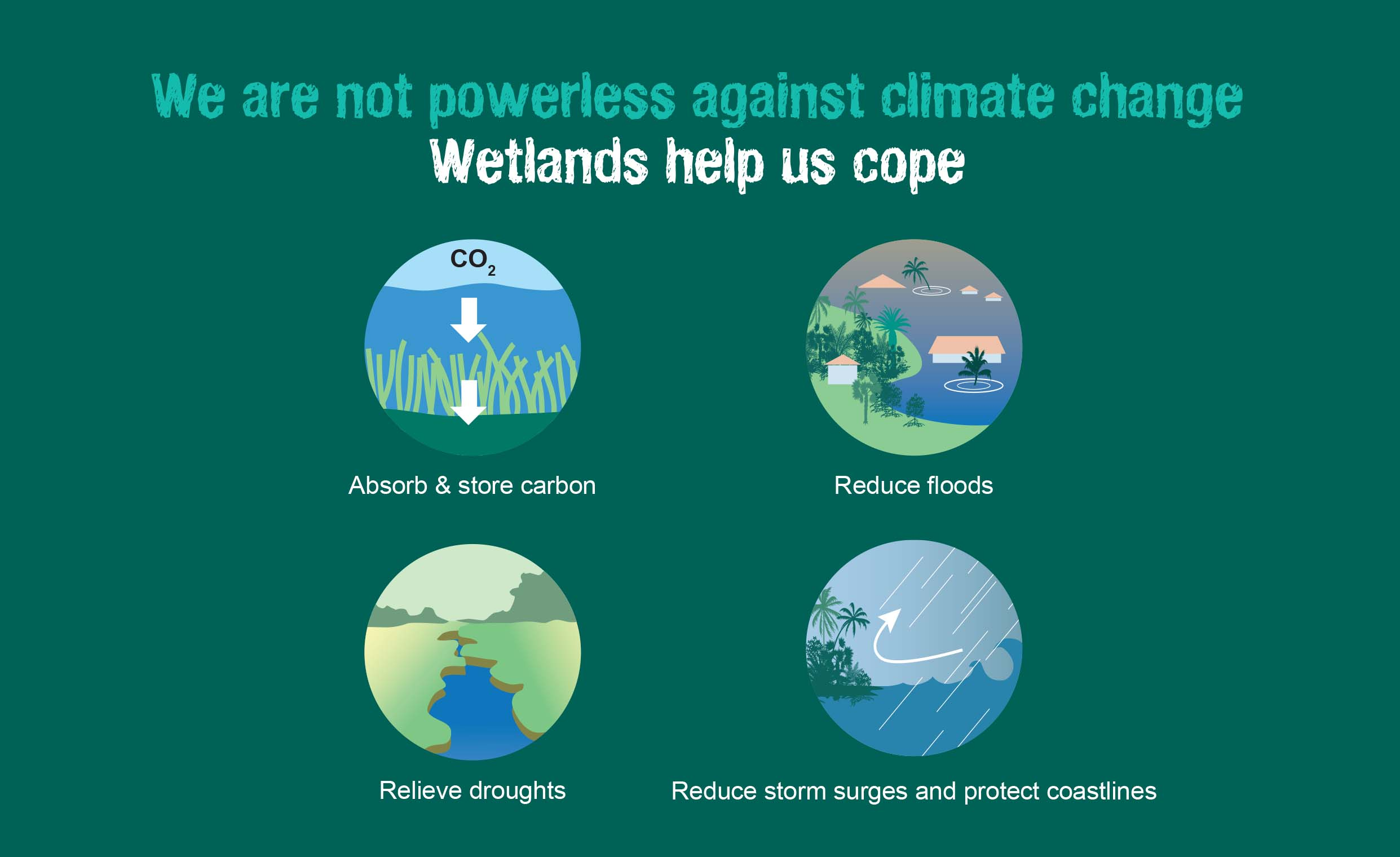 World Wetlands Day 2019