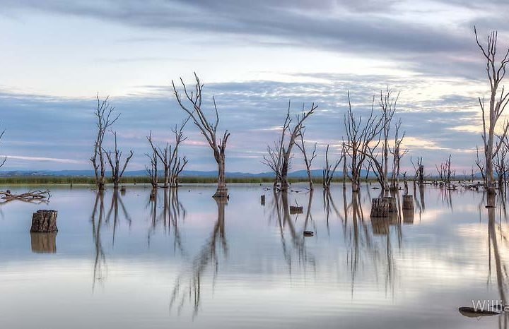 Winton Wetlands Reserve – our identity and heritage